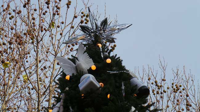 The star made of scalpels atop the Damien Hirst Tree.
