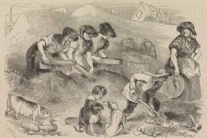 Men, women and children work on a Dust Mound.