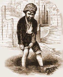 A sketch showing a mudlark.